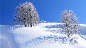 Vivi l'inverno nelle Alpi Carniche e Dolomiti Friulane: visite guidate Cavalieri Erranti e Re Astrologi