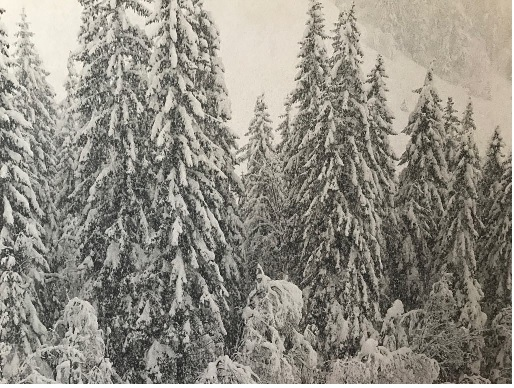 """Mostra fotografica di Carlo Tavagnutti dal titolo """"Paesaggi invernali"""""""