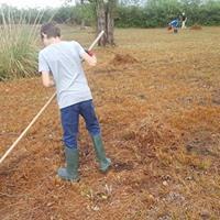 Giornata Ecologica alla Riserva Naturale regionale della Valle Cavanata