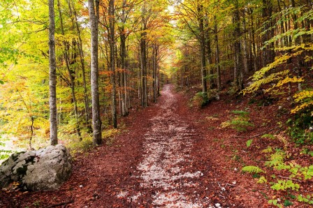 Trekking autunnale in Piancavallo