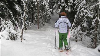 Vivi l'Inverno nelle Alpi Carniche e Dolomiti Friulane - Passeggiata con racchette da neve sullo Zoncolan