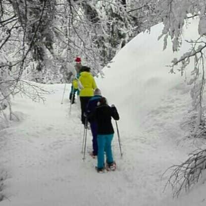 Vivi l'inverno nelle Alpi Carniche e Dolomiti Friulane: Ciaspolata con baita