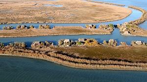 Visite guidate gratuite alla Riserva regionale Valle Canal Novo