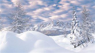 Vivi l'inverno nelle Alpi Carniche e Dolomiti Friulane: visite guidate Panorami tra storia e tradizioni