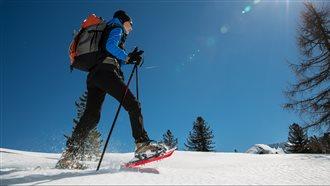 """Vivi l'Inverno nelle Alpi Carniche e Dolomiti Friulane - Ciaspolata sul sentiero degli """"Sbilfs"""""""