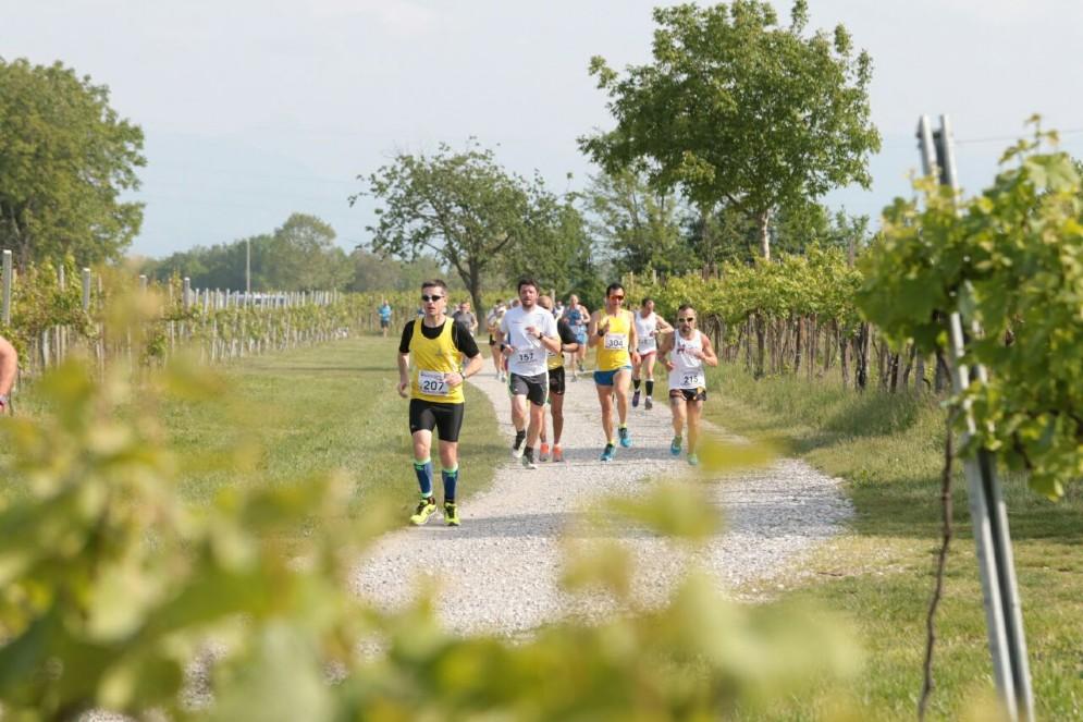 1^ Trofeo Jadér Naonis_11^ Running tra le Vigne