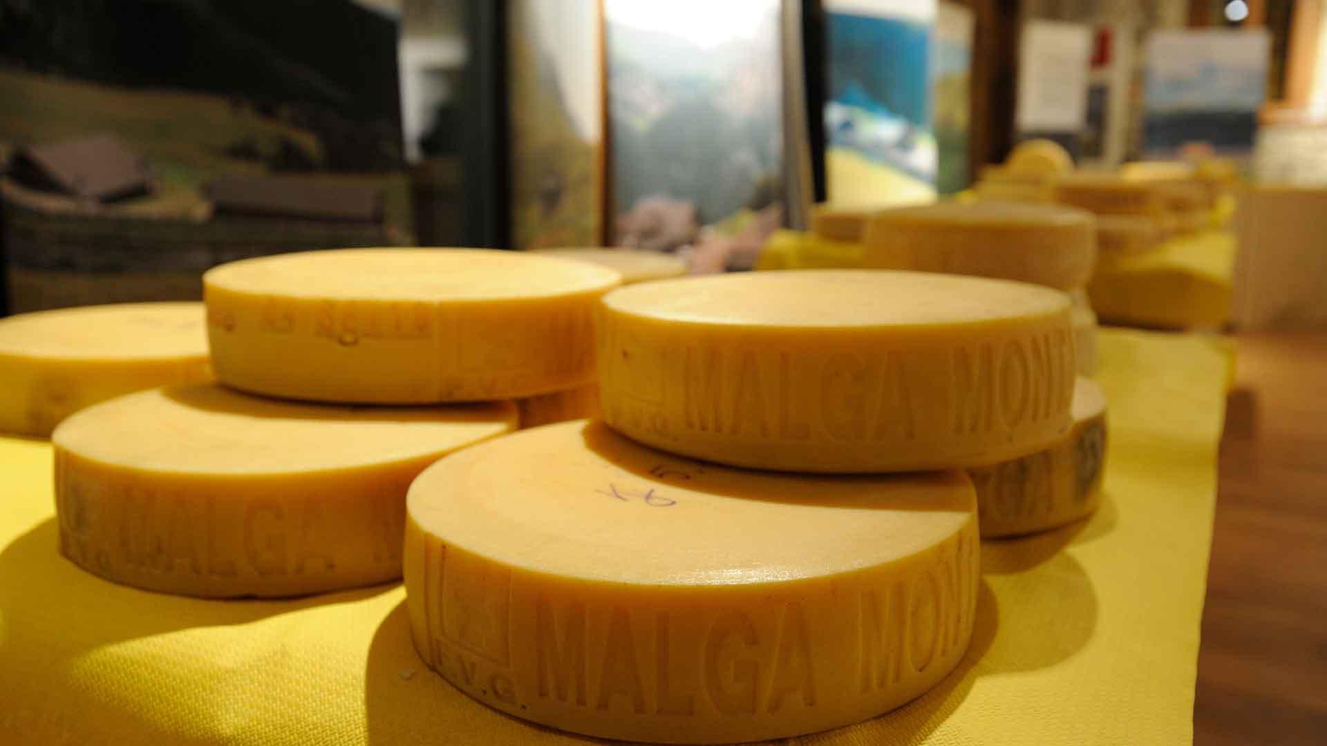 Formandi – Sapori e formaggi di montagna