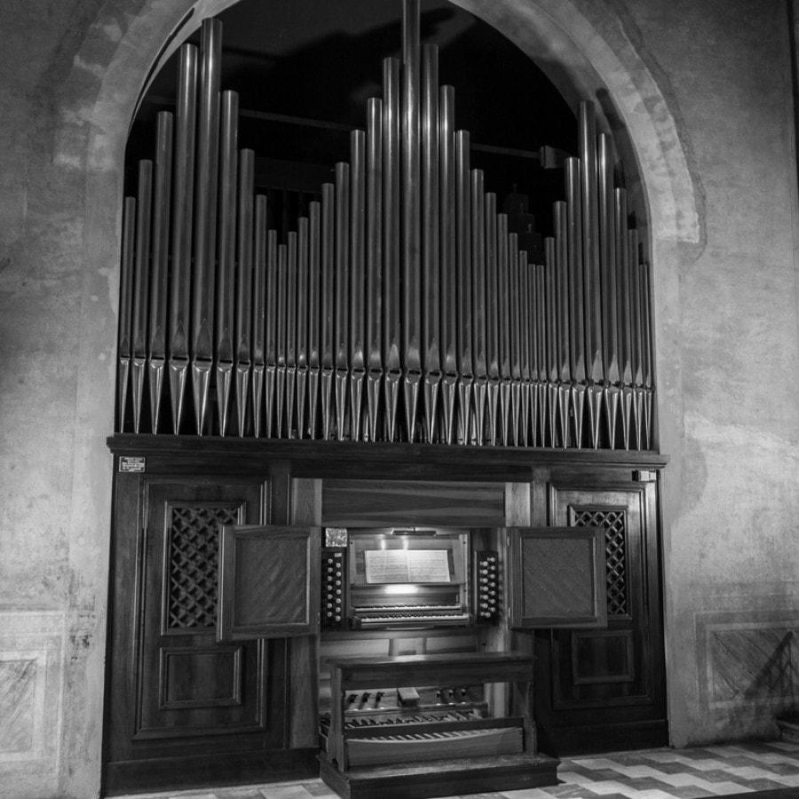 Festival organistico sestense_TriDuo