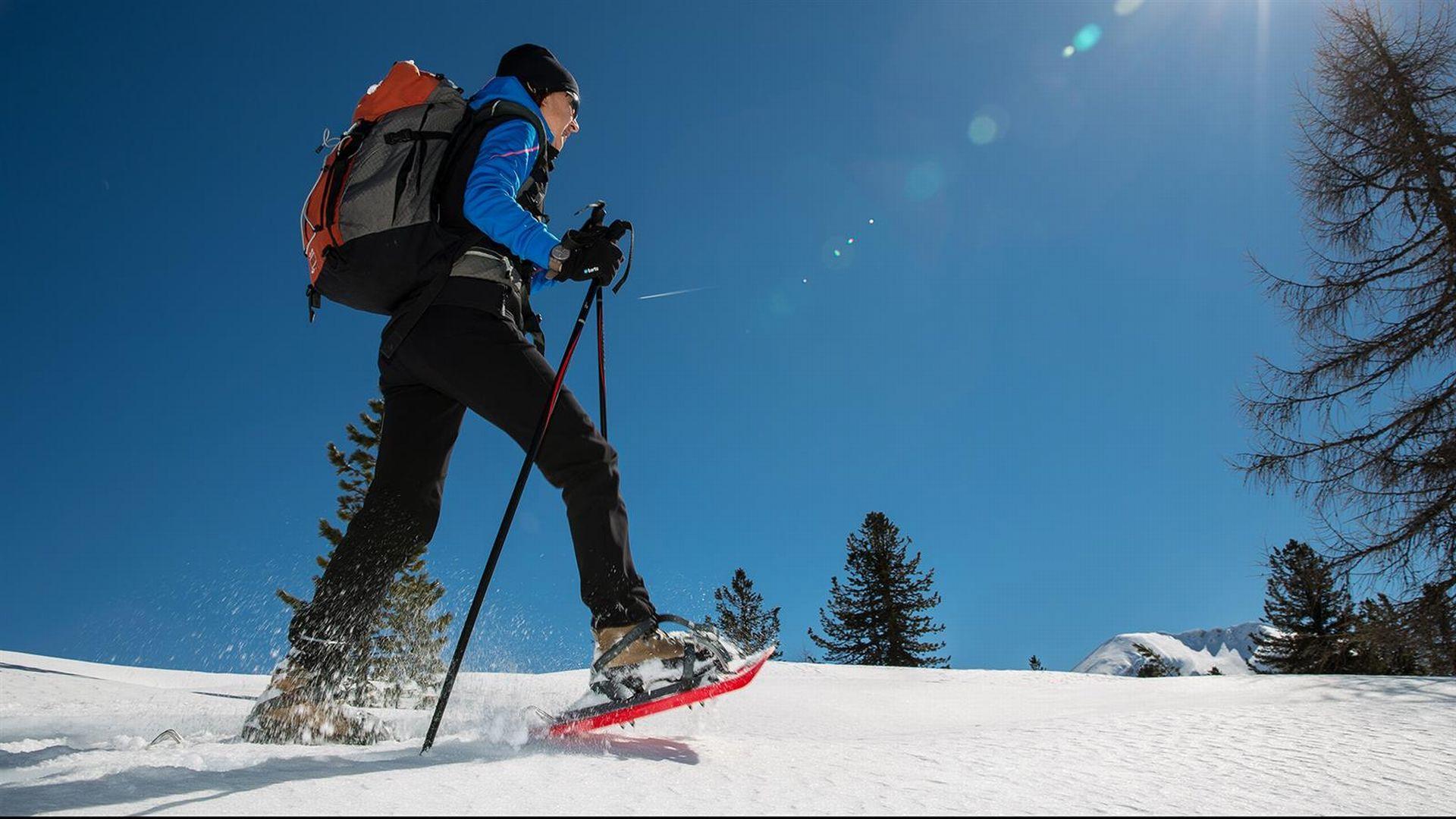 Vivi l'inverno nelle Alpi Carniche e Dolomiti Friulane: Ciaspolata con cena