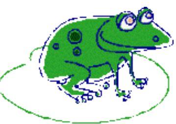 50^ Sagra delle rane