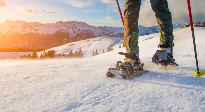 Vivi l'inverno nelle Alpi carniche e Dolomiti friulane: ciaspolata malga marmoreana
