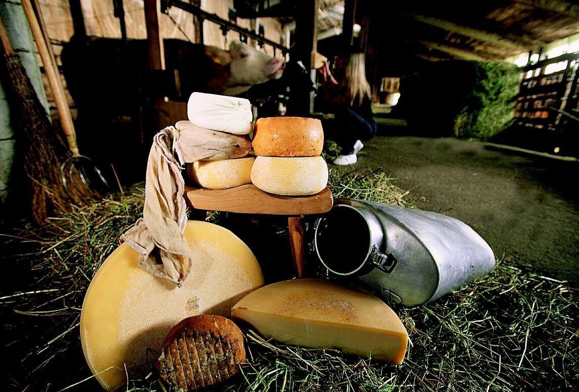 Formandi - Sapori e formaggi di montagna