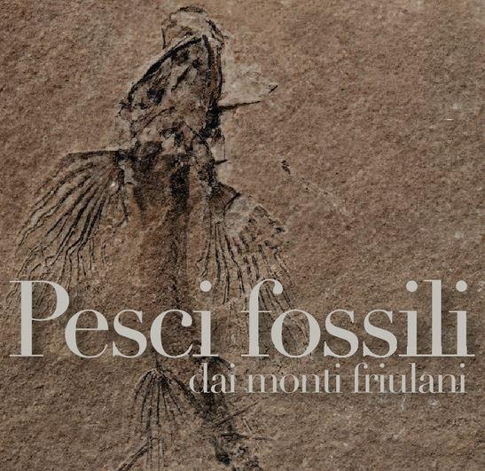 Pesci e fossili dai monti friulani