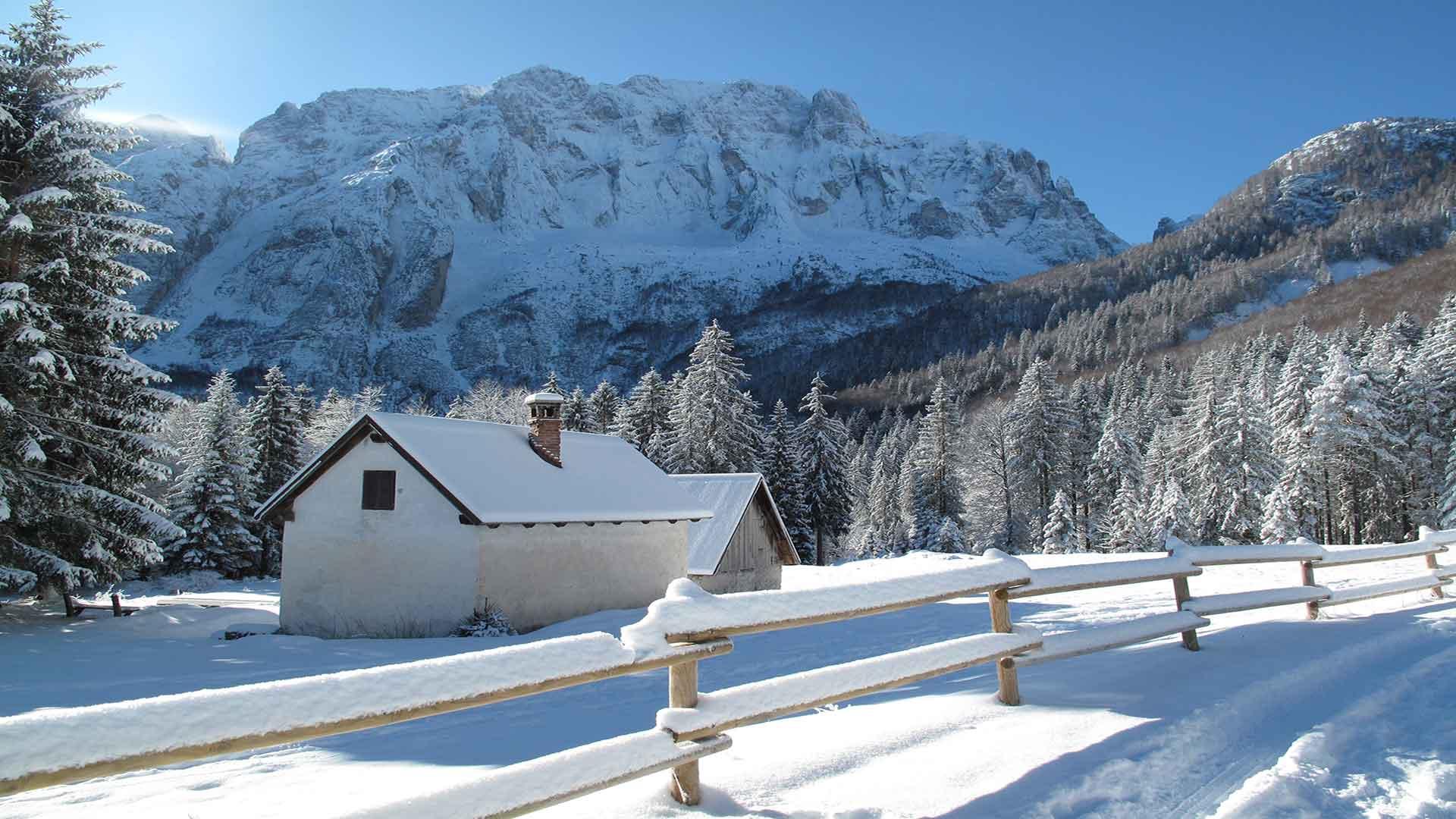 Escursioni Invernali Parco Naturale Prealpi Giulie: L'inverno tra le planine