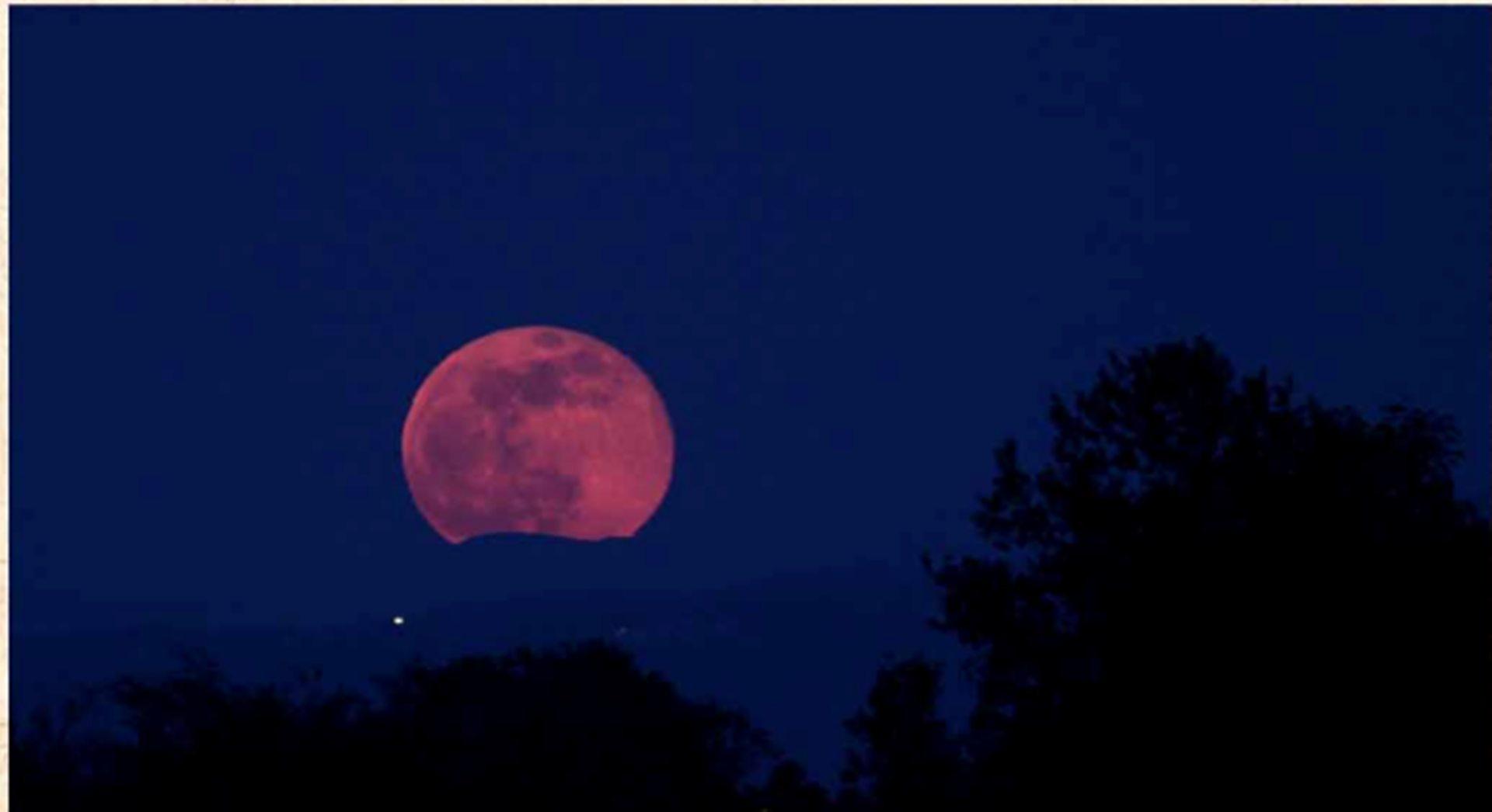 Versi al chiaro di luna - Il giardino al chiaro di luna ...